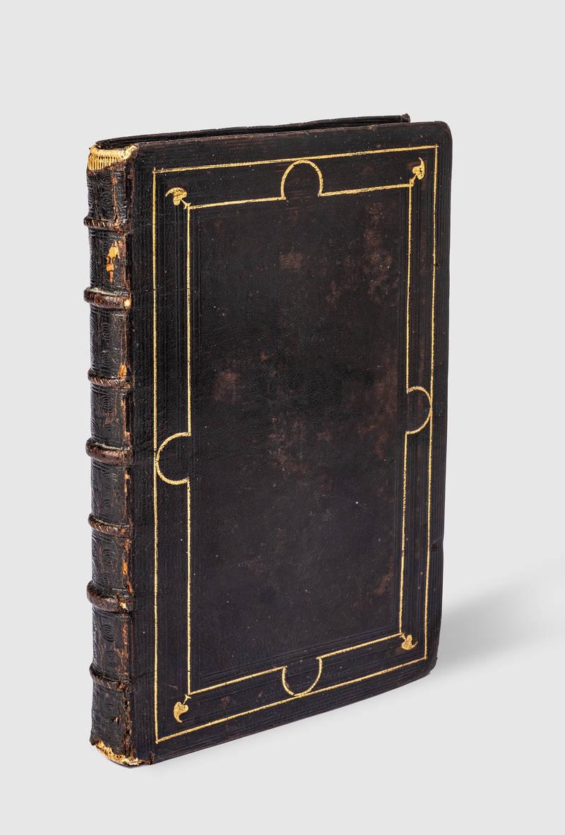 Institutione del Prencipe Christiano, di Mambrino Roseo.